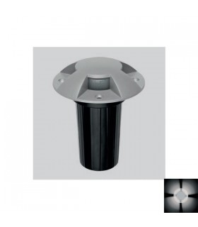Dans 4 Led 6w 4 Lights