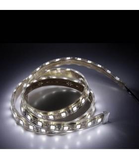 Tira de LED 5 w/m Banco Frio