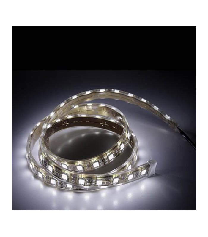 Strip LED 5 w / m Bank Frio